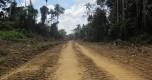 Foto 2carretera Nuevo Edén y Shipetiari Zona de Amortiguamiento de la Reserva Comunal Amarakaeri (1)