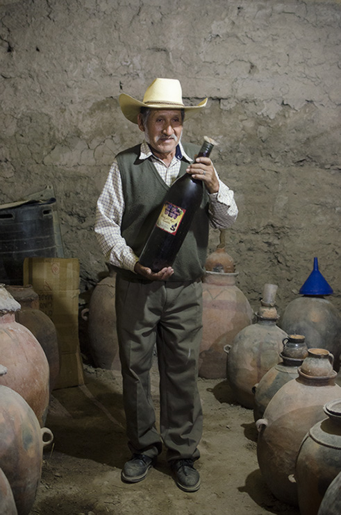 Ecomuseo del vino familia Arroyo - AYO
