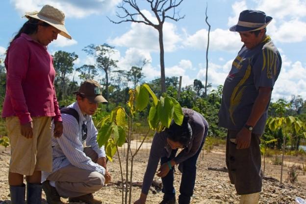 Proyecto biorremediación, Premio Nacional del Ambiente 2015