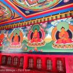 5-ruedas-de-orac-en-entrada-Parque-Sagarmatha