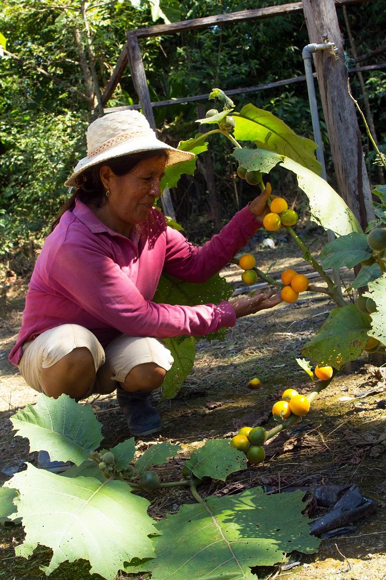 Sanar la tierra para vivir mejor, de otra manera. Foto. Pablo Merino