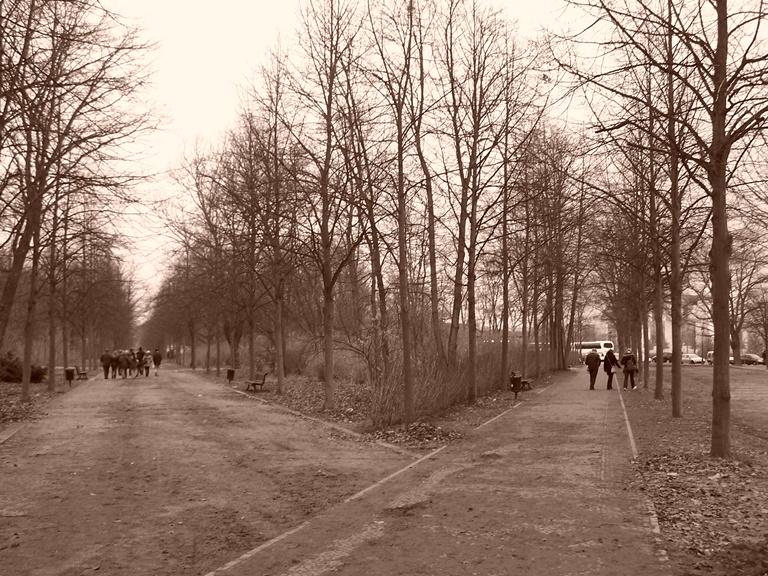 Decisiones - parque Tiergarten, Berlin