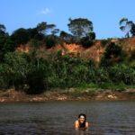 Río Madre de Dios, 2012