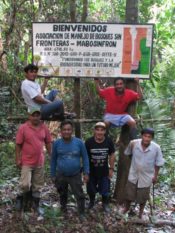 Los asociados al comité MABOSINFRON administran un bosque en concesión de 6,718.80 hectáreas en el sector del río La Novia. Foto de WWF Perú