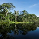 Descanso total en ek Amak Iquitos