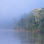 La bruma no impidió el trabajo de los expedicionarios. Sebastián Castañeda / WWF Perú
