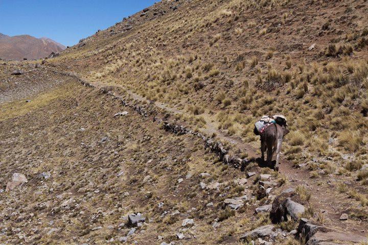 Tramo Xauxa - Pachacamac, trazo de  camino en las proximidades de la laguna Mullucocha, Tanta, Yauyos,  Lima