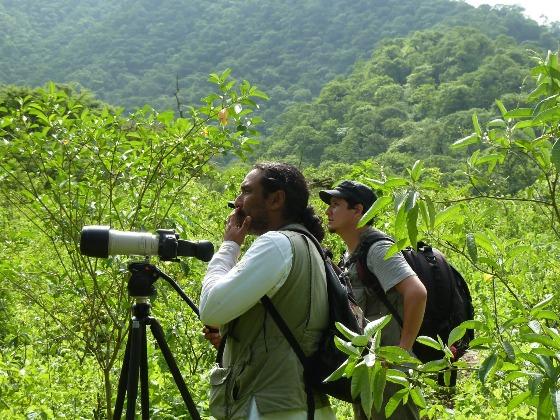 Foto tomada de http://mitambordehojalata.blogspot.pe