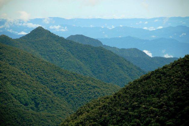 Bosques de Chontachaka, foto APCONK.